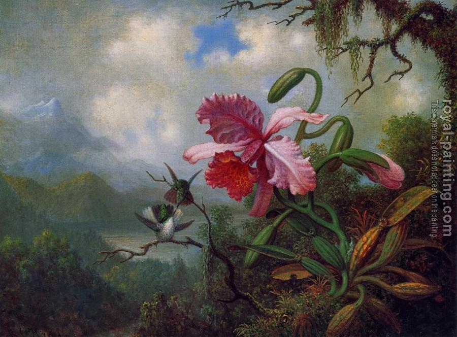 Orchid and Hummingbirds near a Mountain Lake