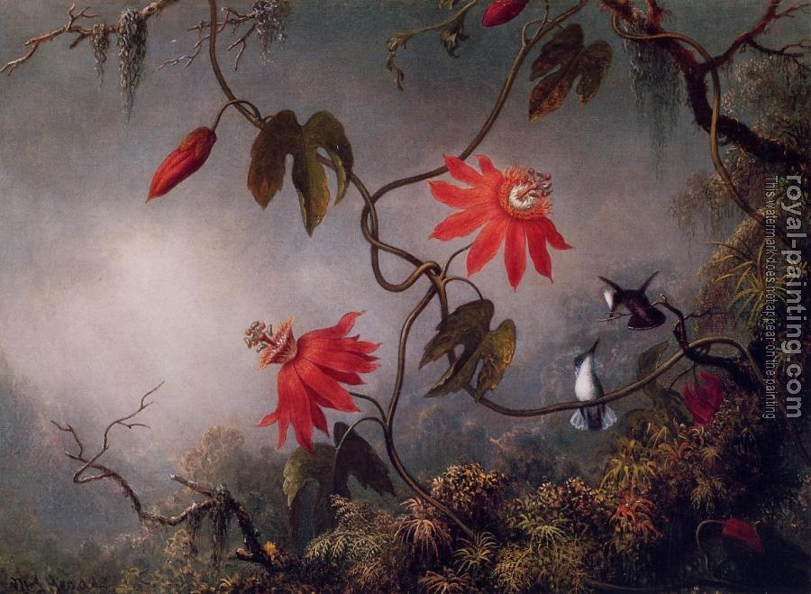 Martin Johnson Heade : Passion Flowers and Hummingbirds