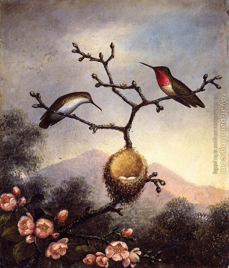 Martin Johnson Heade : Ruby Throats with Apple Blossoms