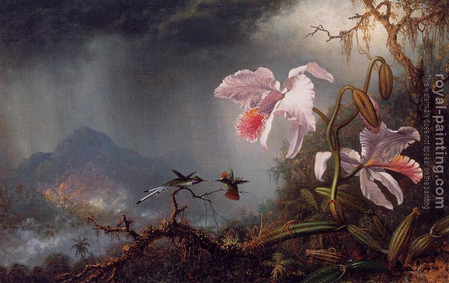 Martin Johnson Heade : Two Fighting Hummingbirds with Two Orchids