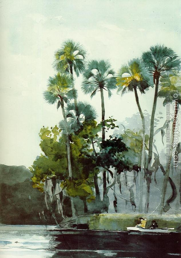 Winslow Homer : Homosassa River