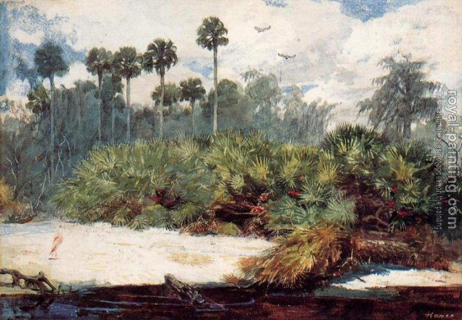 Winslow Homer : In a Florida Jungle