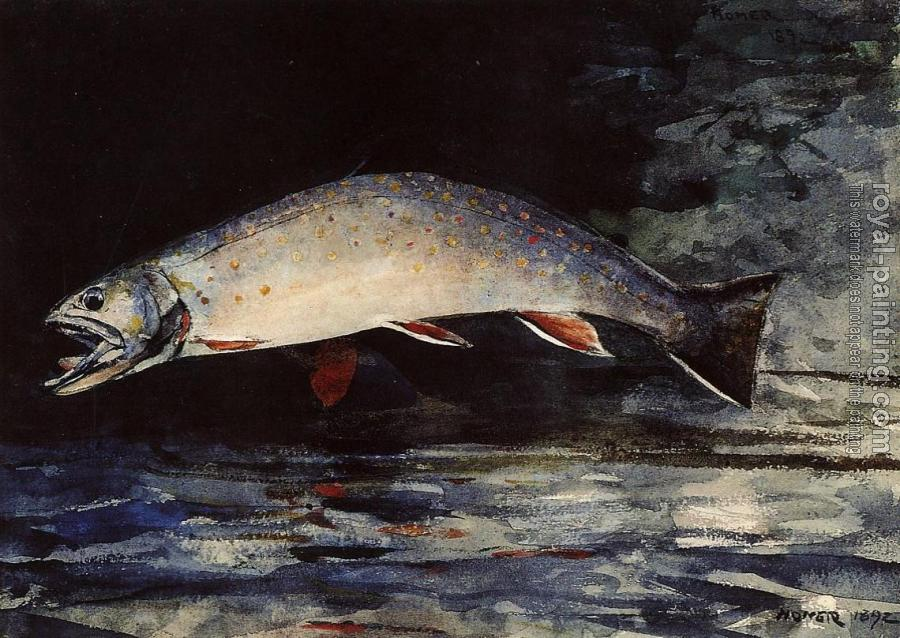 Winslow Homer : A Brook Trout