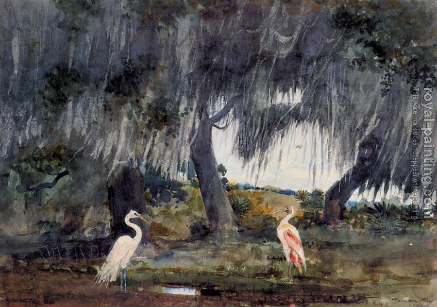 Winslow Homer : At Tampa