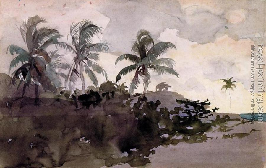 Winslow Homer : Coconut Palms