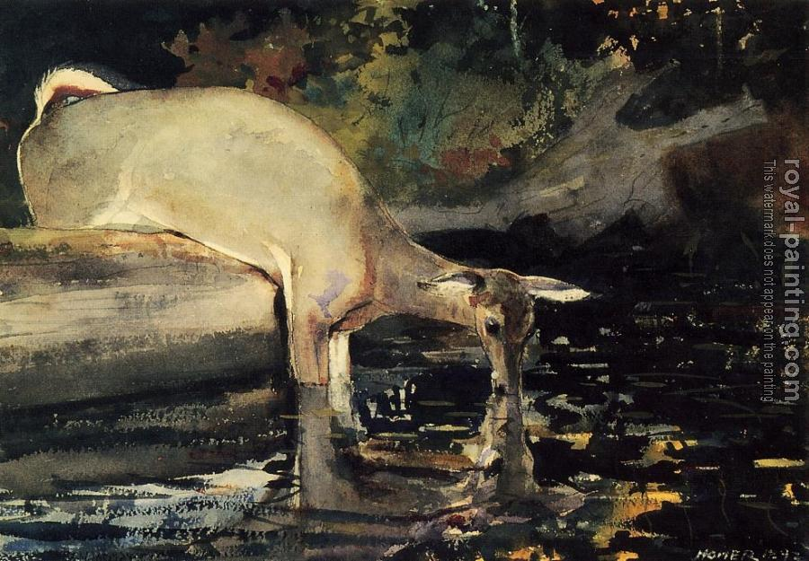 Winslow Homer : Deer Drinking