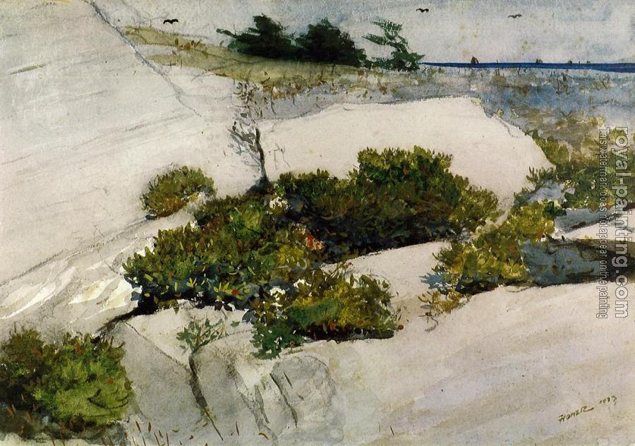 Winslow Homer : Maine Cliffs