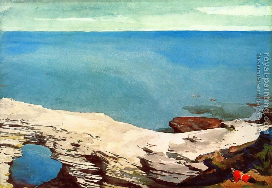 Winslow Homer : Natural Bridge, Bahamas