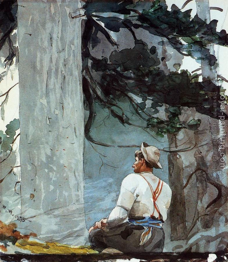 Winslow Homer : The Guide II