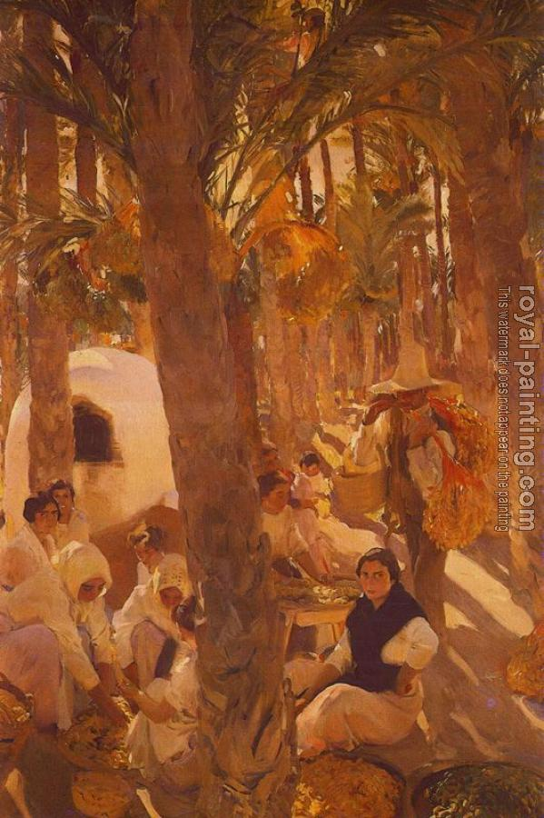 Joaquin Sorolla Y Bastida : The Elche palm grove