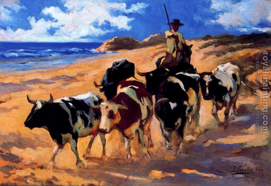 Joaquin Sorolla Y Bastida : Oxen at the Beach