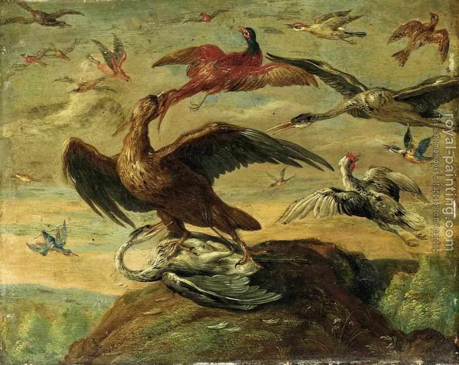 Jan Van Kessel : birds