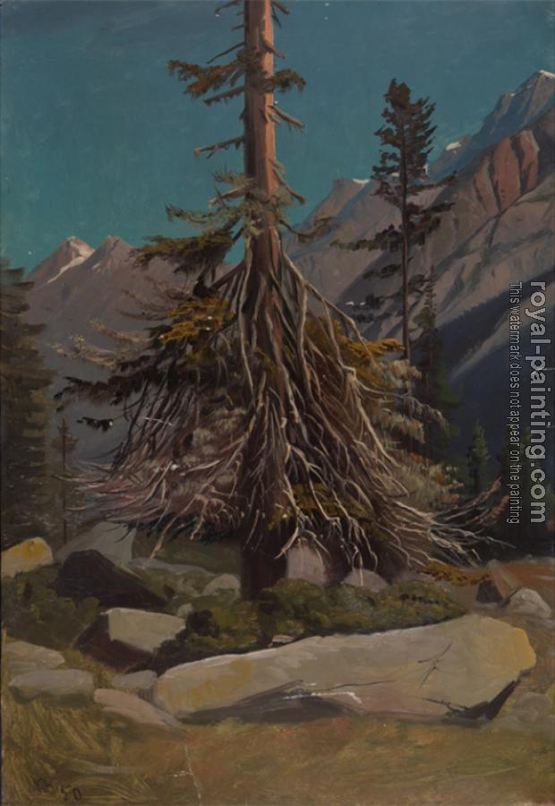 Knud Baade : Study of trees in the alps
