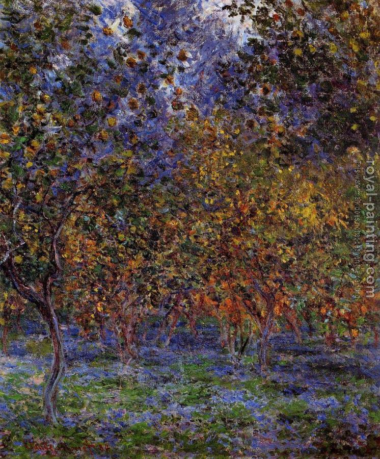 Claude Oscar Monet : Under the Lemon Trees