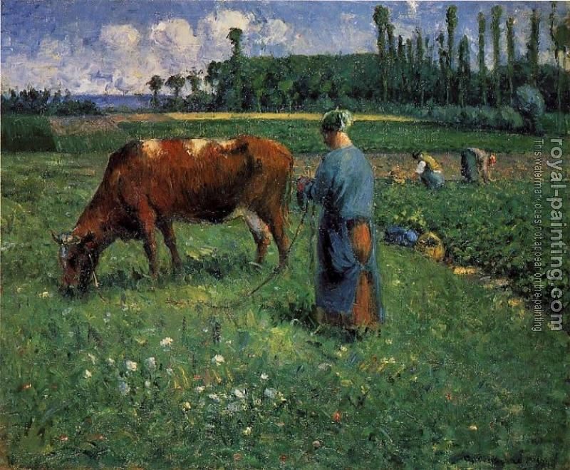 Camille Pissarro : Girl Tending a Cow in a Pasture