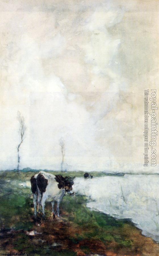 Jan Hendrik Weissenbruch : A Cow Standing By The Waterside In A Polder