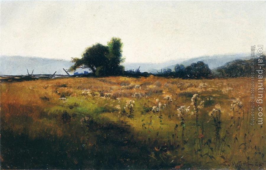 Willard Leroy Metcalf : Mountain View from High Field
