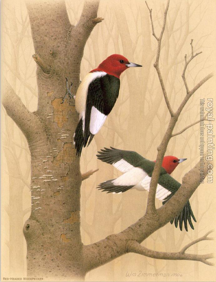 Red headed Woodpecker by William Zimmerman   Oil Painting ...