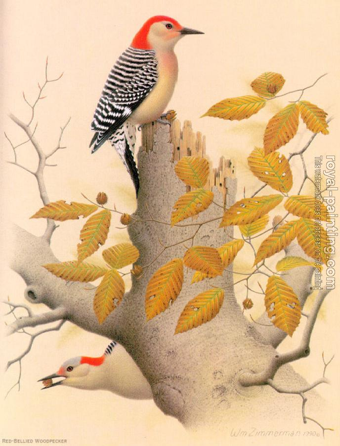 Red-bellied Woodpecker by William Zimmerman   Oil Painting ...