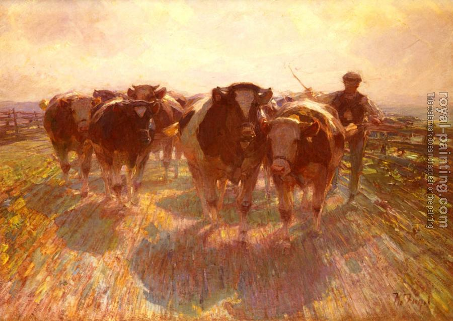 Cattle Drive on the Farm Road